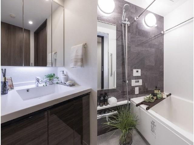 ラ・トゥール新宿アネックスのお風呂と洗面所
